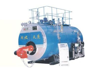 WNS系列燃油气必威体育苹果下载